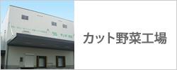 カット野菜工場